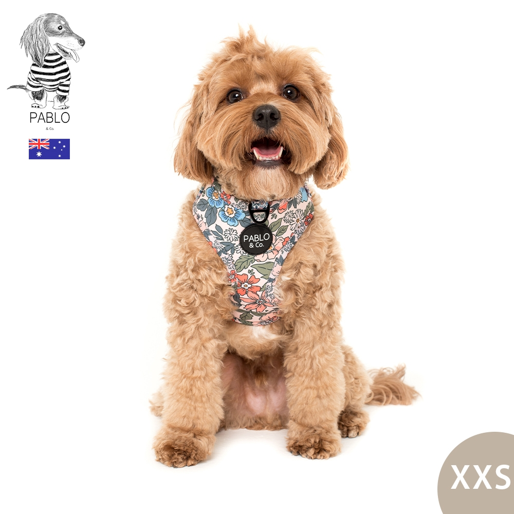 澳洲Pablo & Co 可調整式胸背帶 寵物胸背帶 狗狗胸背帶 奶奶家花園 XXS