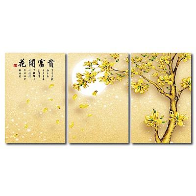橙品油畫布 - 三聯無框圖畫藝術家飾品 - 花開富貴 40x60cm