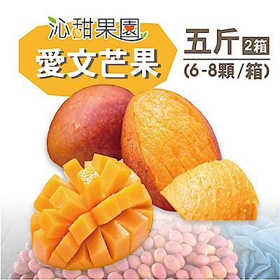 沁甜果園SSN 屏東枋山愛文芒果5台斤(6-8粒/箱,共2箱)