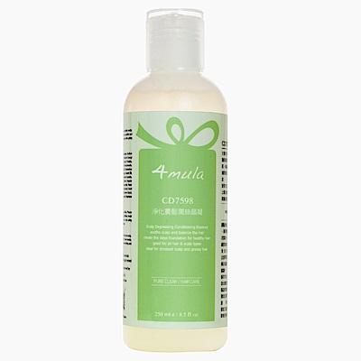 4mula 膚慕蕾 髮絲潔淨系列 淨化養髮潤絲晶凝 (250ml)