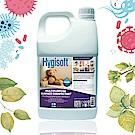 芬蘭Hygisoft 科威多用途表面殺菌消毒4L*1