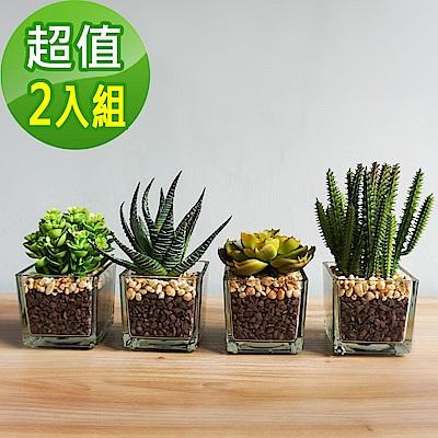 【Meric Garden】 仿真迷你多肉療癒小盆栽組合2入/組