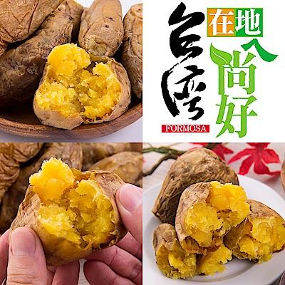 台灣在地ㄟ尚好-台農57號冰烤地瓜*4包(500g/包)