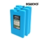 【IgLoo】保冷劑 MAXCOLD 25201 L號 【三入一組】 product thumbnail 1
