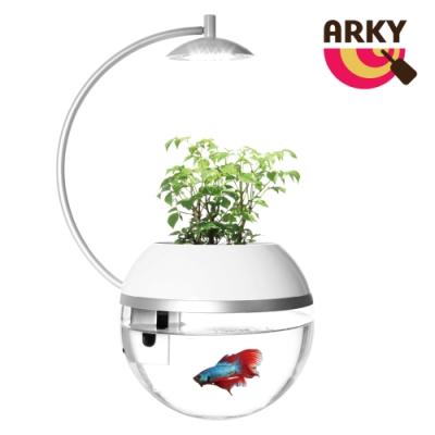 時時樂 ARKY 香草與魚Herb&Fish X