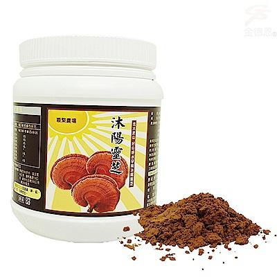 金德恩 養生食品松杉靈芝粉末1瓶100g/附贈小湯匙/台灣製造/有機SGS認證