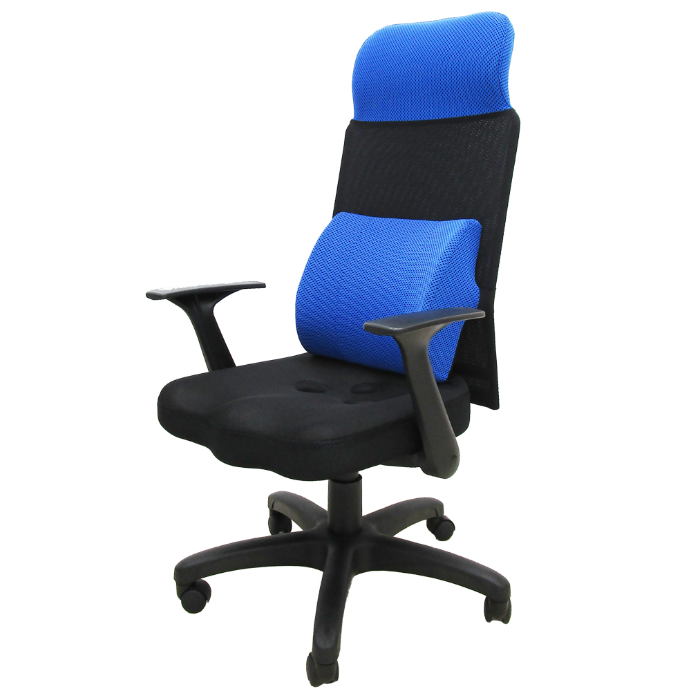 Z.O.E 卡奇斯高背護腰網椅/3D立體坐墊 (藍色)