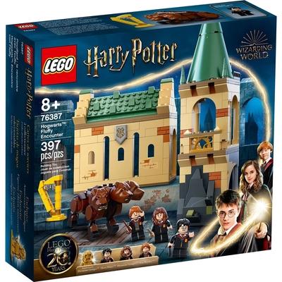 樂高LEGO 哈利波特系列 - LT76387 Hogwarts: Fluffy Encounter