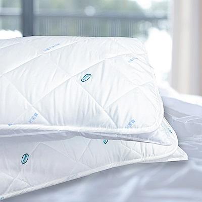 澳洲Simple Living 防蹣抗菌防潑水保潔枕套--二入(台灣製)