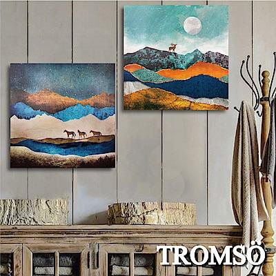 TROMSO 時尚無框畫-百岳大境