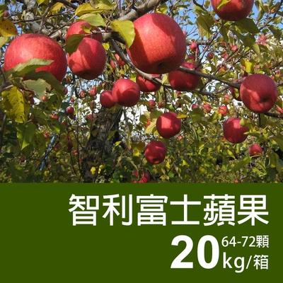 築地一番鮮-智利富士蘋果20kg(64-72顆/箱)