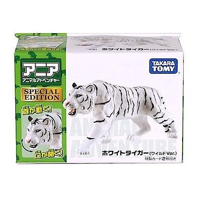任選TOMICA 白老虎(亞洲限定版) AN12509多美動物園