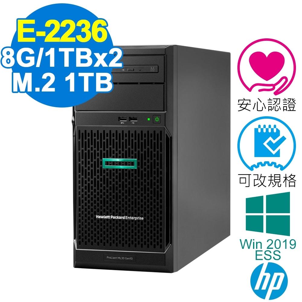 HP ML30 Gen10 伺服器 E-2236/8G/660P 1TB+1TBx2/2019ESS