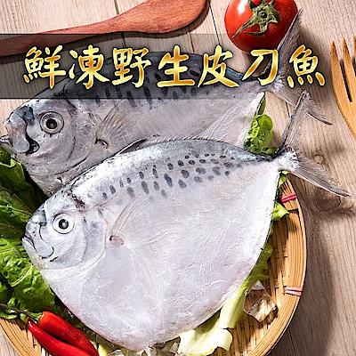 【愛上新鮮】鮮凍野生皮刀魚20隻組(2隻裝/180-200g±10%/隻)