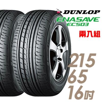 【登祿普】ENASAVE RV503經濟省油輪胎_二入組_215/65/16(EC503)