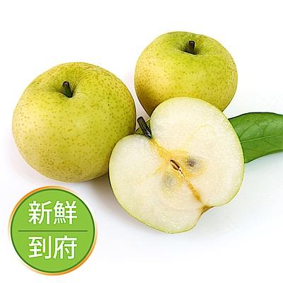 【果物配】黃金梨.友善農法(3.6kg/10顆)