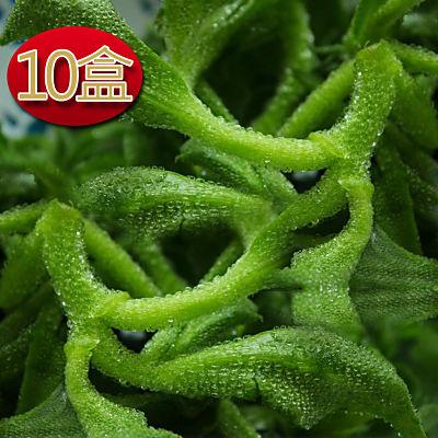 陽光農場  網室栽種水晶冰菜120g(10盒入)