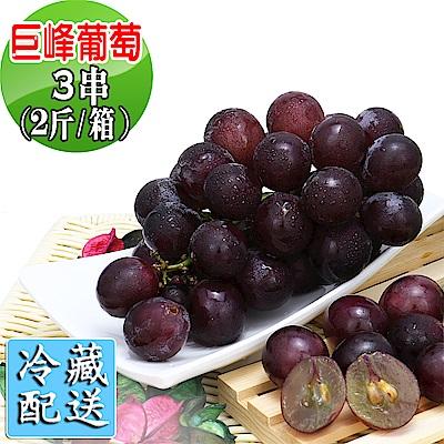 愛蜜果 巨峰葡萄3串箱裝~約2斤/箱(冷藏配送)