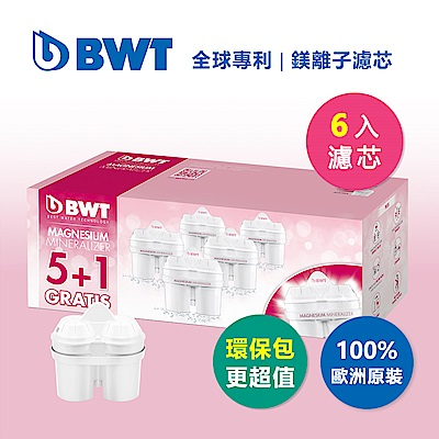 BWT德國倍世 Mg2+鎂離子8週長效濾芯-5+1入(快)