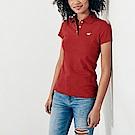 HCO Hollister 海鷗 經典海鷗刺繡標誌短袖Polo衫(女)-紅色