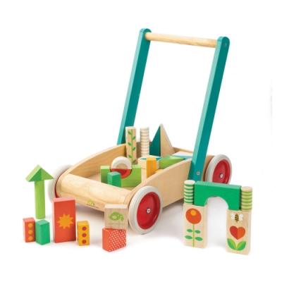 Tender Leaf Toys木製玩具-繽紛積木學步車
