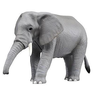 任選TOMICA 音效版AS02 非洲象 AN81426 多美動物園