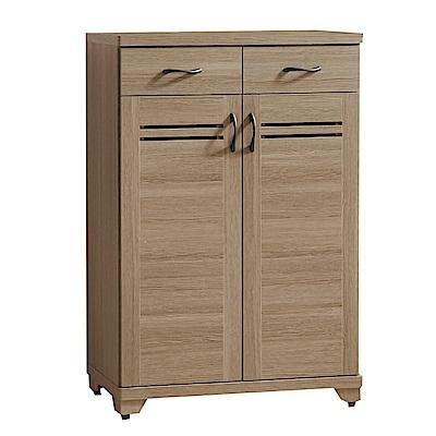 綠活居 莉比娜現代2.7尺二門二抽鞋櫃/玄關櫃-80x40x118cm免組