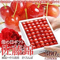 【天天果園】日本原裝山形縣櫻桃300g/盒