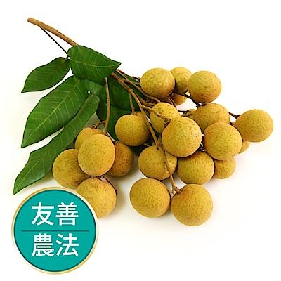 【果物配】古早味龍眼.友善農法(3.6kg)