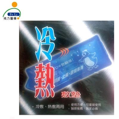 Fe Li 飛力醫療 冷熱兩用敷墊(附贈布套)