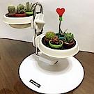 My Garden療癒植物容器 多肉精靈系列/盆栽調整架/低-DY604