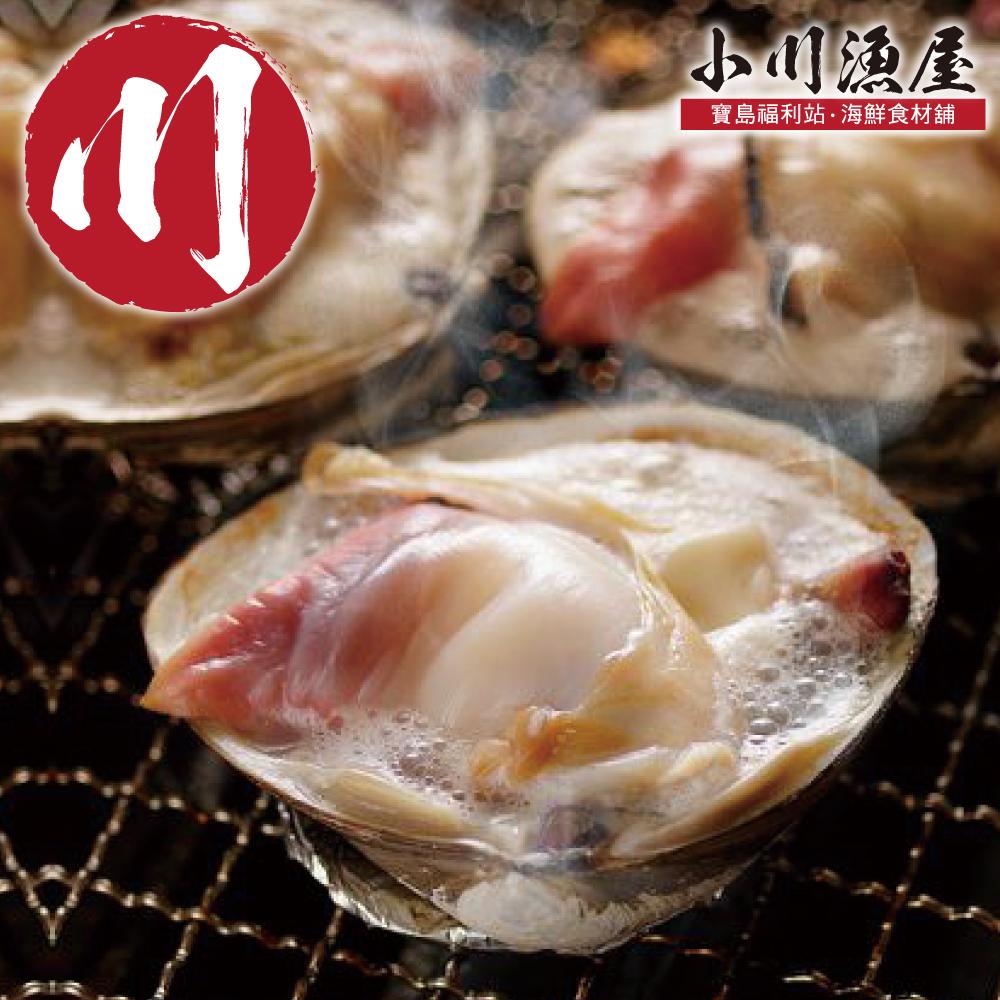 小川漁屋 空運鮮活北寄貝1公斤(1kg/3~5顆)