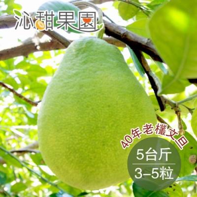 沁甜果園SSN 40年老欉文旦(約3-5粒/5台斤)