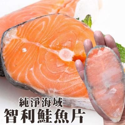買5送5【海陸管家】鮮嫩智利鮭魚片 共10片(每片約100g)