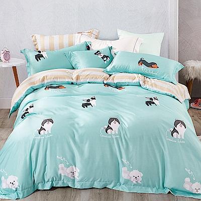 Ania Casa 追夢 涼感天絲 採用3M吸溼排汗專利 加大鋪棉兩用被床包組