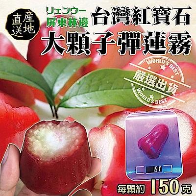 【天天果園】台灣紅寶石特大子彈蓮霧 x4斤