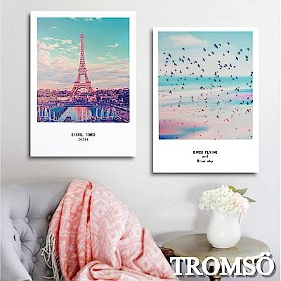 TROMSO 時尚無框畫-巴黎美境