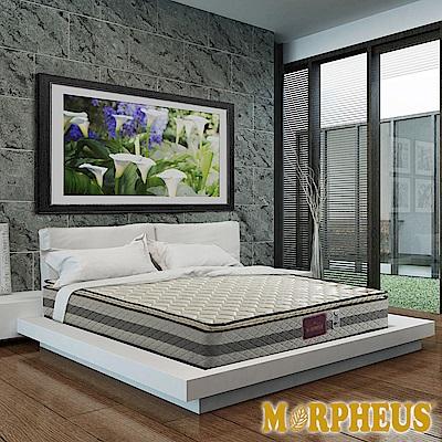 夢菲思 真三線防蹣抗菌蜂巢式獨立筒床墊-雙人5尺