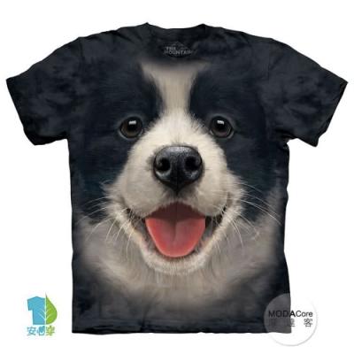 摩達客-美國進口The Mountain 小邊境牧羊犬微笑 兒童版純棉環保短袖T恤