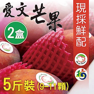 Mango House 枋山愛文芒果 5斤x2盒(9~11顆/盒) 輸日等級蘋果檨