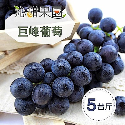 沁甜果園SSN 苗栗巨峰葡萄(5台斤/箱)