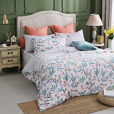 MONTAGUT-100%純棉兩用被床包組-雙人/加大均一價