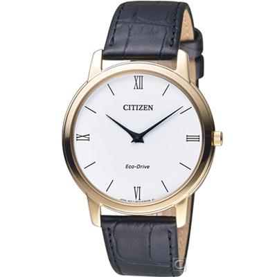 CITIZEN 紳士的品格光動能腕錶(AR1133-23A)39mm