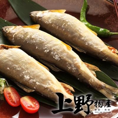 【上野物產】台灣爆卵母香魚 x2盒(1kg/盒 8~10隻)