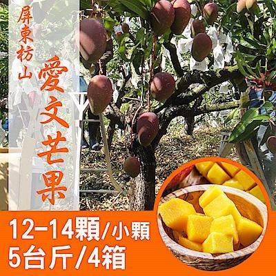 【產地直送】屏東枋山愛文芒果5台斤X4箱(12-14顆/箱)