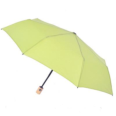 2mm 清新淡雅通勤自動開收傘 (綠色)