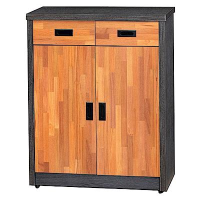 綠活居 邁比瑞時尚2.7尺雙色二門鞋櫃/玄關櫃-82x39x121cm-免組