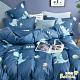 Betrise藍色恐龍 雙人 3M專利天絲吸濕排汗四件式兩用被床包組(採用3M專利吸濕排汗藥劑) product thumbnail 1
