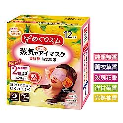 美舒律 蒸氣眼罩 (12片裝/盒) (共5款可選)