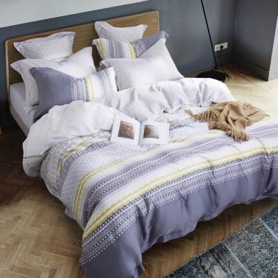 Ania Casa 辰渝 天絲 100% TENCEL 加大鋪棉兩用被套床包四件組